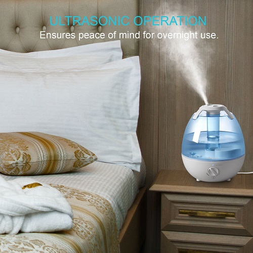 The Best Quiet Mist Humidifiers Mist Humidifier Guide