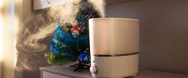 The Best Quiet Mist Humidifiers