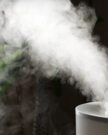 Best 4 Mist Humidifiers for Colds