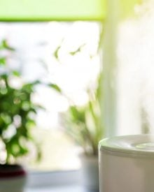 How Does a Humidifier Help With Bronchitis and Breathing? And Best Ones