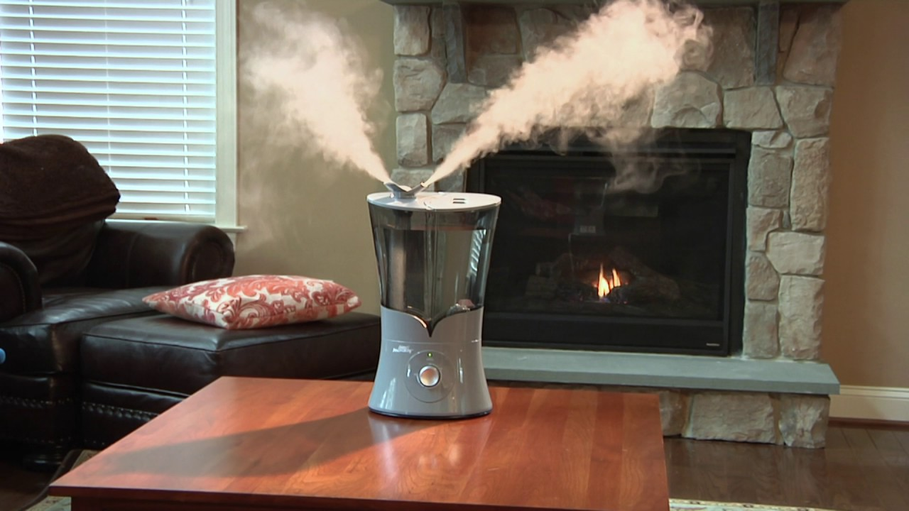 Best Humidifier For Dry Skin Mist Humidifier Guide