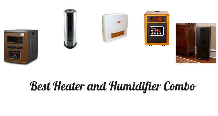 Best Heater and Humidifier Combo